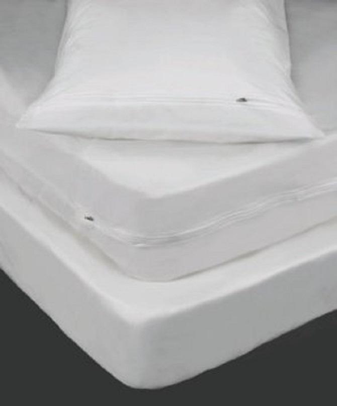 Bedbugcover Com Kleencover Superior Mattress Cover Bed